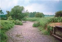 Terry Marsh, CEH © 1991, a dry groundwater-fed river in Southern England