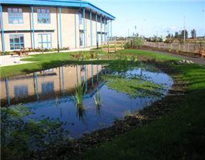 Sustainable drainage systems, such as attenuation ponds can help reduce surface water flooding.